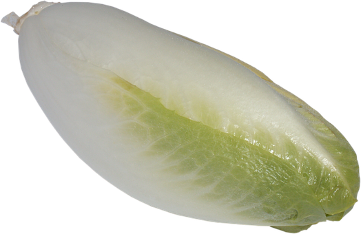 Chicory, A Vegetable, Green, Eating, Food, Vitamins