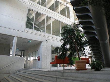 Atrium, Aula, University, Modern, Architecture, Space