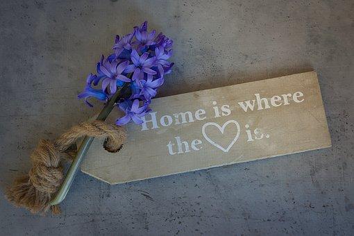 Hyacinth, Flower, Flowers, Blue, Blue Flower