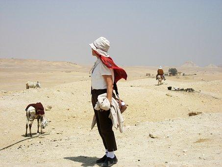 Egypt, Desert, Camel, Libya Desert, Sandstorm