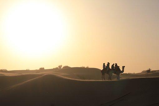 Dubai, Desert, Safari, Camel, Sunset, Dune, Landscape