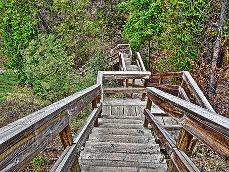 Stairway, Wooden, Perspective, Steps, Outdoor