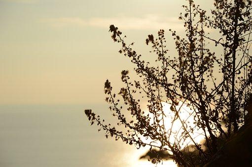 Reflection, Sea, Italy, Reflections, Colors, Horizon