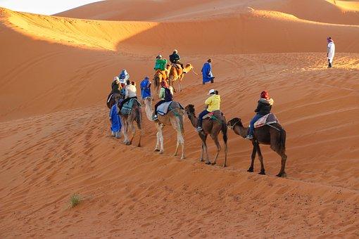 Caravan, Camel Riding, Trip, Sand Dunes, Golden Sands