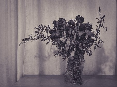 Roses, Flowers, Black And White, Table, Bouquet, Dead