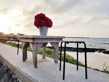 Jeju Island, Sehwa Beach, Beach, Table, Flowers, Glow