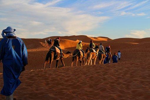 Trip, Adventure, Camel Caravan, Sahara, Golden Sands
