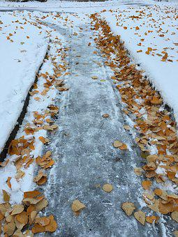 Winter, Way, Tracks, The Nature Of The, Snow, Coldness