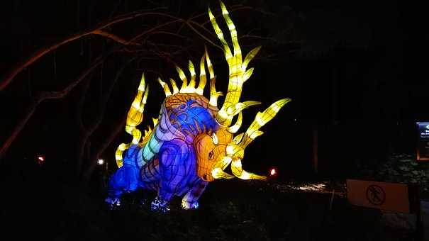 Asia, Light, China, Exhibition, Garden, Lights