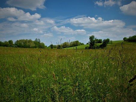 Landscape, Nature, My Green Valley, Grass, Sky