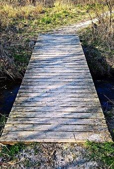 Landscape, Bridge, Web, Trail, Small Stream, Water