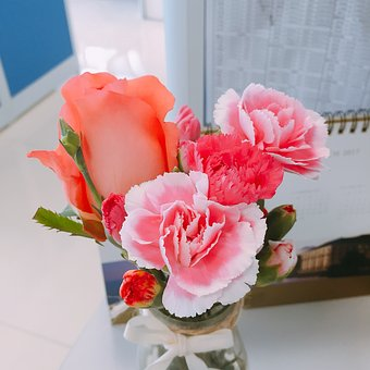 Flowers, Characteristic, The Petty Bourgeoisie, Fresh