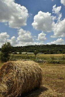 The Countryside Of Puglia, Campaign Barsento