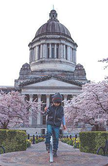 Boy, Child, Cute, Spring, Bloom, Blossom, Capitol