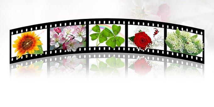 Filmstrip, Film Roll, Film, Film Camera, Video Camera