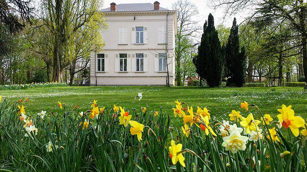 Park, Antwerp, Ekeren, Bist, Flowers, House, Facade