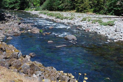 Salmon River, Mt, Hood, Oregon