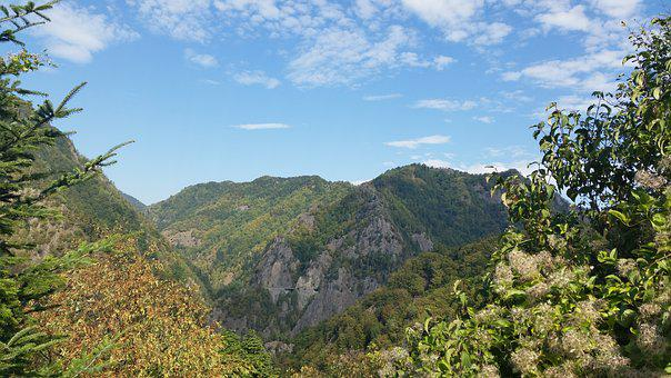 Romania, Nature, Hills, Trees, Sky, Day, Blue Sky