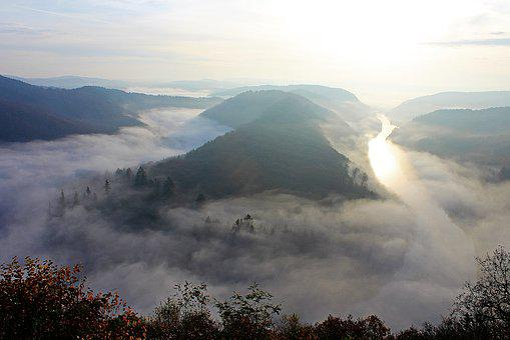 Morning Mist, River Landscape, Saar Loop, Forest