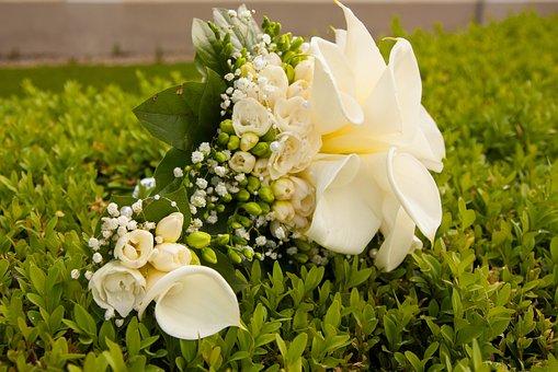 Wedding, Bouquet, Wedding Bouquets, Feather, Sludge