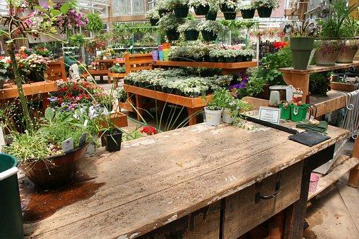 Garden Center, Garden, Floral, Plant, Pot, Gardening