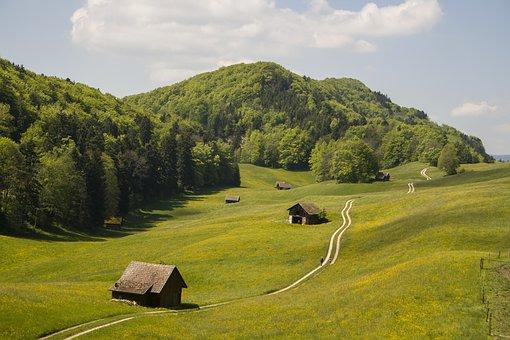 Nature, Hiking, Switzerland, Jura, Basel Area