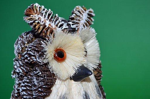 Owl, Green, Bird, Odd Job, Their Hands, Beak, Cones