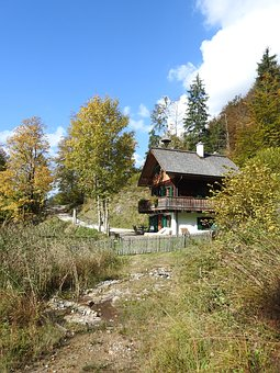 Hut, Forest, Alone, Wood, Log Cabin, Old, Forest Lodge