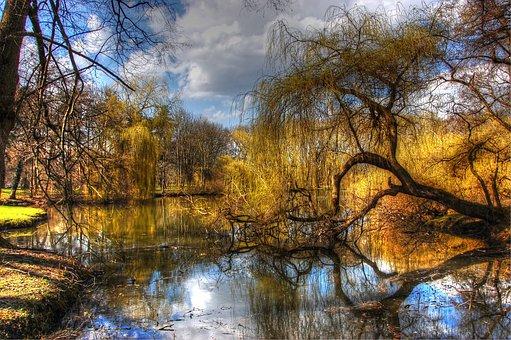 Braunschweig, Park, Germany, Nature, Landscape