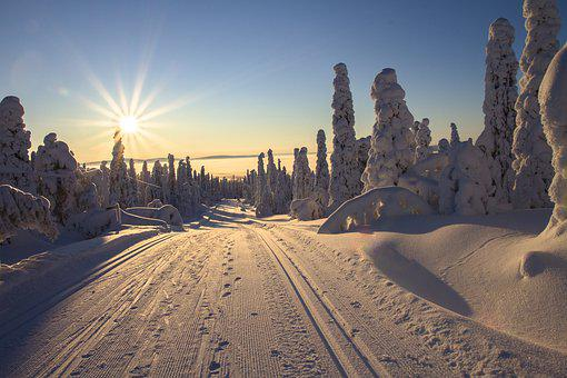 Finland, Lapland, Wintry, Cross Country Skiing