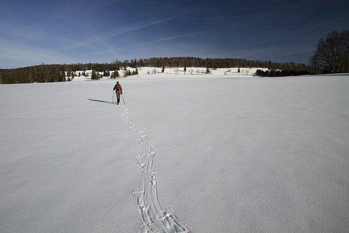 Snowshoeing, Winter, Wintry, Winter Hike, Snowy