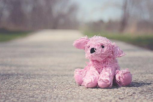 Toy, Pink, Bear, Doll, Stuffed, Animal, Baby, Girl, Dog