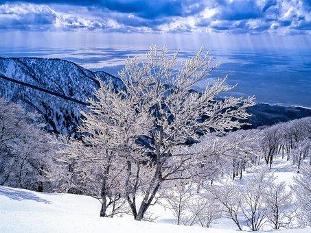 Landscape, Rime, Mountains, Sea, Shirakami-sanchi