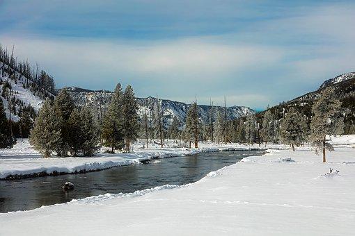 Yellowstone, National Park, Travel, Tourism, Snow