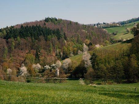 Odenwald, Cultural Landscape, Mixed Forest, Südhessen