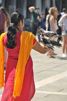 Indian Woman, Sari, Pigeons, Tourist, Venice, Romantic