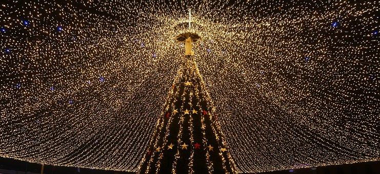Romania, Ro, Sibiu, Xmas, Christmas, Tree, Light
