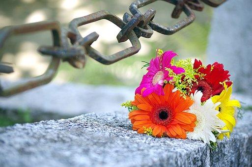 Flowers, Wedding, Union, Ceremony, Trim, Link