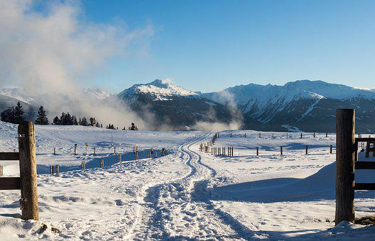 Winter, Snow, Tuxer Alps, Grace Forest