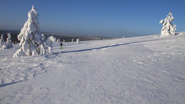 Snow Shoe Snow Shoe Run, Finland, Lapland, Wintry