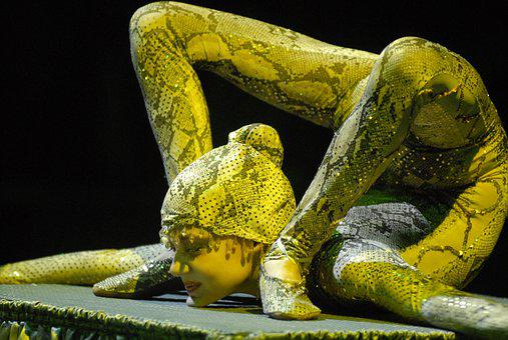 Circus, European Youth Circus 2008, Snake Man