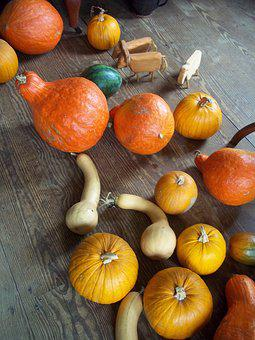 Rustic, Gourd, Squash, Fall, Holiday, Wood, Autumn