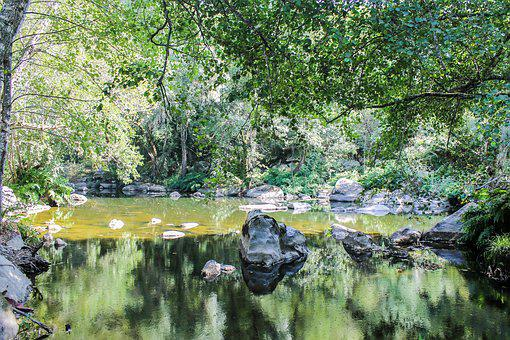 Rio, Serra, Nature, Water, Mountain, Green, Tranquility