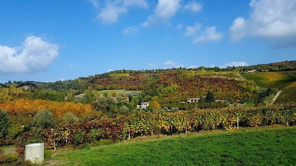 Monferrato, Autumn, Campaign