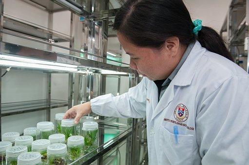 Plant Tissue Culture Facility