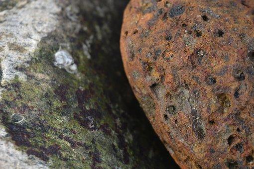 Stone At Sea Shore, Sea Shore, Red Stone, Close Up