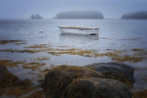 Rocks, Seaweed, Boat, Nature, Beach, Sea, Ocean, Water