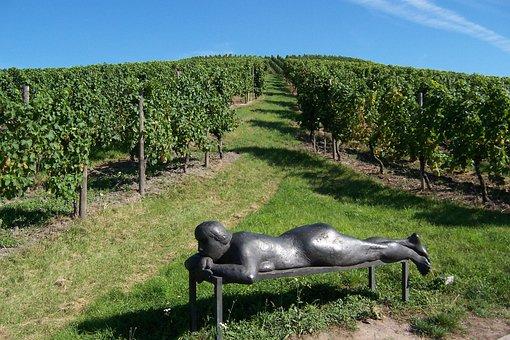 Landscape, Sculpture, Vineyard, Winegrowing