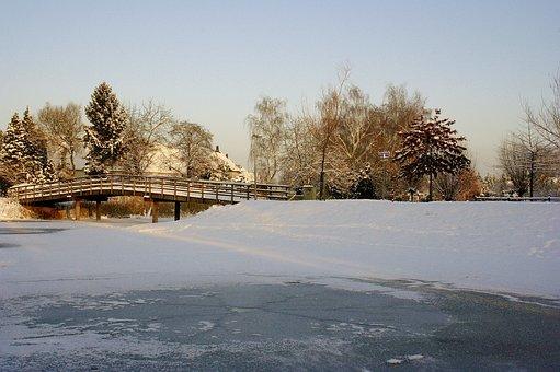 Winterbeeld, Winter, Winter Weather, Frost, Freeze