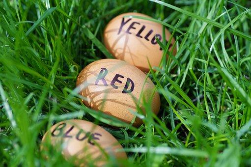 Easter, Eggs, Easter Eggs, Joke, Color Eggs